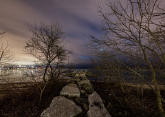 3 minutes later... (HisPhotographs.com) Tags: humberbaypark strong toronto tostrong peace sign driftwood rocks cn tower cntower city downtown lakeontario lake ontario canada humber bay park bluehour colorful sky purple night longexposure trees winter cold uwa clouds cloudy water nature urban 11mm