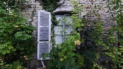 Window (ostplp) Tags: window vintage ruine exploration château patrimoine abandonné urbex