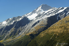 20190206-94-French Ridge Hut below Mt Aspiring (Roger T Wong) Tags: 2019 aspiringnationalpark cascadesaddletrack nz nationalpark newzealand rogertwong sel24105g sony24105 sony2470fe24105mmf4goss sonya7iii sonyalpha7iii sonyilce7m3 southisland westmatukitukivalley bushwalk hike mountain mountains outdoors tramp trek walk