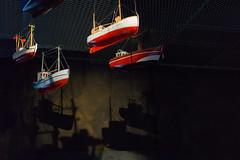 The source of the shadows (Sir_Francis_Barney) Tags: dänemark denmark hirtshals aquarium