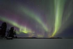 Korpikartano aurora 7.3.2019 b (Hotel Korpikartano) Tags: green hotelkorpikartano northernlights auroraborealis inarilapland revontulet nightphoto finland winter night