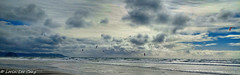 Windy Day (lorinleecary) Tags: water california windsurfing cayucos morrorock hills ocean clouds