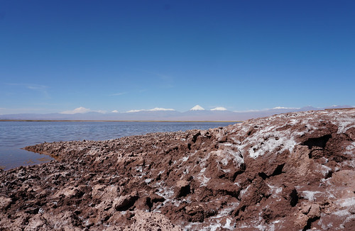 The Tebinquiche Lagoon (Laguna Tebinquiche) at 2,400 meters (7,874 ft) above sea level, the Salar de Atacama, the Atacama Desert, San Pedro de Atacama, Chile.