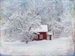 Winter idyll. (Bessula) Tags: bessula winter snow house red trees shrubs forest season view sweden texture creative scenery country hill coth5 aoi elitegalleryaoi bestcapturesaoi