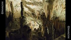 Addentrandosi nelle Grotte di Postumia (s@mu) Tags: grotte postumia stalattiti stalagmiti terra profondità cavità sedimentazione buio slovenia carsismo erosione gallerie carso carbonatodicalcio speleologia speleofauna exjugoslavia alpigiulie caves postojna stalactites stalagmites earth depth cavity sedimentation darkness karst erosion galleries calciumcarbonate speleology exyugoslavia julianalps nikon d7100 samuele furlan furlansphotogmailcom