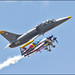 L-39 Albatros + Flying Bulls