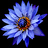 shaman_healing icon