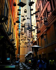 Forgotten Songs (missgeok) Tags: forgottensongs angelplace laneway smallstreet narrowstreet interesting artwork birdcages sydney newsouthwales australia touristspot travel outdoor hangingbirdcages birdsinging popular pov lighting mood angle colours