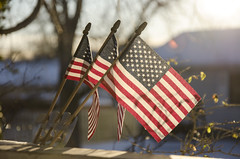 Blowin' In The Wind (aaron_gould) Tags: flag nikkor d7000 america sunset cold snow winter red white blue green bokeh united states outside trees