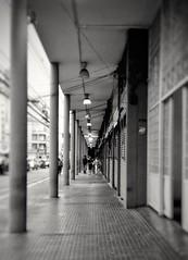 São Paulo/SP - Brasil    instagram @luciano_cres (Luciano9358) Tags: pretoebranco pb monochrome monocromatico sãopaulo brasil brazil photocellphone photography fotografia