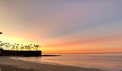 Sunrise at the Bay (davidweedallphotography) Tags: sunrise platinumheartawardsgroup the beach thebeach colors california summer water waves ocean nature naturephotography palm trees palmtrees sand lagunabeach