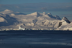 IMG_6875 (y.awanohara) Tags: cuvervilleisland cuverville antarctica antarcticpeninsula icebergs glaciers blue january2019
