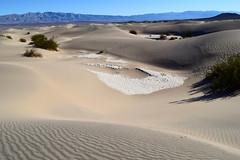 California 2019 (pauladear.contently.com) Tags: california death valley mesquite flat sand dunes