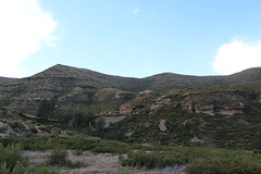 Greenery (Rckr88) Tags: greenery clarens freestate southafrica free state south africa mountains mountain green grass cliff cliffs nature outdoors travel travelling hike hikes hiking walk walkway