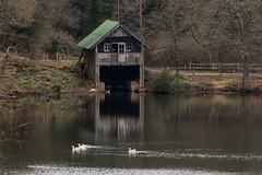 Winkworth boathouse (20190301) (Graham Dash) Tags: nationaltrust winkwortharboretum boathouses lakes