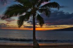 Shows over (Kirt Edblom) Tags: maui mauihawaii kihei kiheihawaii hawaii gaylene maipoinaoeiaupark beach park wife milf water waves waterscape scenic serene sand tree trees tropical palmtree palm palmtrees sunset sunlight sun red blue bluesky clouds landscape wave seascape kirt kirtedblom edblom luminar nikon nikond7100 nikkor18140mmf3556 pacific pacificocean ocean