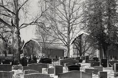 Cemetery, Vantaa Finland (m.pertti) Tags: landscape cemetery helsinginpitäjänkirkonkylä vantaa finland blackandwhite monochrome film fomapan400
