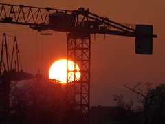 P1130818 (Traud) Tags: germany deutschland bavaria bayern sunset sonnenuntergang sonne sun crans kräne silhouette