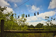 Five Lights on a Wire (surfcaster9) Tags: traffic lights wires blue sky clouds railing lumixg7 20mmf17 outdoors grass fence
