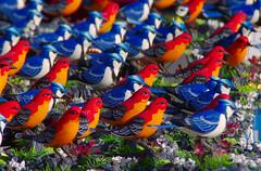 Kolorwe stadko (jacekbia) Tags: europa poland polska kurpie łyse ptaki ptaszki dekoracje wielkanoc wiosna