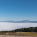 Above the clouds on Taylor Mountain in Sonoma County.