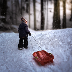 Stroll in the woods (Marcin Frączek) Tags: winter child childphoto childrenphotography sled snow snowfall kid woods light magic dreamy poland zakopane frozen
