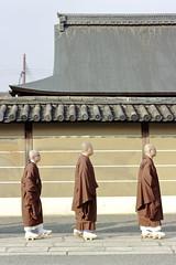 _MG_1846 (Nekogao) Tags: japan winter kyoto kansai 日本 関西 京都府 京都市 京都 冬 東寺 世界文化遺産 世界遺産 unescoworldculturalheritage unescoworldheritage toji 坊主 monks buddhistmonks
