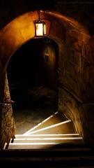 Into the  deep chambers - Warwick Castle (dksesha) Tags: seshadri dhanakoti harita vilambisamvatsara panasonicdmcg6 panasonicg6 warwickcastle owl castle sesh seshfamily haritasya urvashi panasonic dmcg6 g6 birdsofprey warwick