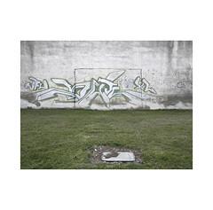 Penalty...  ( Navarra ) (José Luis Cosme Giral) Tags: penalty urbannature peripheralplace grass wall graffiti olympus childrenscorner navarra doctorgradusadparnassum