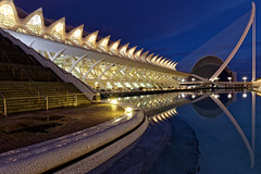 Science Museum with Pont de l'Assut de l'Or at the background (HansPermana) Tags: valencia spain spanien españa iberianpeninsula city cityscape oldtown architecture modern futuristic bluehour reflection longexposure lights sciencemuseum museum pontdelassutdelor ciutatdelesartsilesciències november 2018 herbst autumn