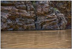 _DSC5567-a (tellytomtelly) Tags: grandcanyon grandcanyonnationalpark coloradoriver river rock arizona