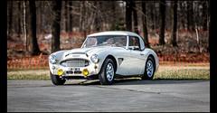 Austin Healey 100 BN4 (Laurent DUCHENE) Tags: godsavethecars auto automobile automobiles autodrome classiccar linasmontlhéry 2018 car motorsport youngtimer austin healey 100 bn4