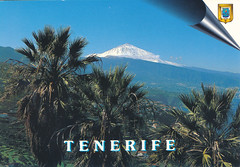 IMG_0085 Tenerife Postcards Worldwide Travels to Geoff Spafford from Veda and Roy 19 May 1999 (photographer695) Tags: postcards worldwide travels geoff jean spafford tenerife from veda roy 19 may 1999