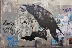 Monsieur Qui_5424 passage Saint Sébastien Paris 11 (meuh1246) Tags: streetart paris animaux oiseau monsieurqui passagesaintsébastien paris11 ericlacan corbeau crâne