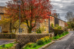Bridge Cottages (Kev Walker ¦ 10 Million Views..Thank You) Tags: architecture clouds england lancashire outdoor sky snow town village aitken barley beautiful beautifulvillage blacko bluesky british buildings cloudy cold council covered crossroad downham english famous floralforeground hill houses icon information landscape near nelson parish parks path pendle rural sign signpost street sunny symbols tourism travel under urban view walking weather winter wood