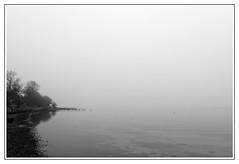 Silence (malp007) Tags: silence coast küste ostsee balticsea monochrome havet denmark danmark blackwhite stillife landscape