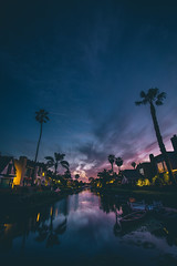 venice canals (viewsfromthe519) Tags: california usa pacific coast palm trees venicecanals bluehour skyscape cloudscape clouds sky purple blue houses water reflection venice