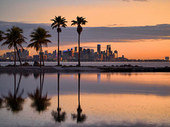 Twilight Miami Skyline (joiseyshowaa) Tags: morning dawn sunrise twilight evening dusk sunset rise set orange sky silhouette skyscrapers scrapers architecture skyline buildings reflected light biscayne bay lake pond reflection clouds urban metropolitan waves palm frond leaves