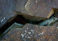 Split rock (Donard850) Tags: northyorkmoors lichen rocks splitrock texture