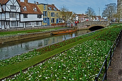 River Walk (CarolMoore007) Tags: riverstour rivers cities castles water history canterbury kent england