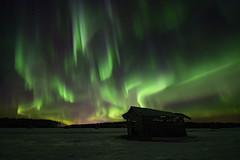 The Day of Kalevala (Jyrki Liikanen) Tags: auroraborealis auroras aurorasky aurorastorm naturephotography nature barn countryside landscape nightphotography night stars starrysky northernlights polarlights jyrkiliikanenphotography