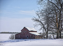 Quiet After The Storm (jackalope22) Tags: barn snow red blue trees winter
