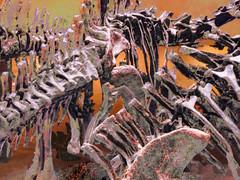 Bones (Steve Taylor (Photography)) Tags: asia singapore replica model bones fossil leekongchiannaturalhistorymuseum lkc naturalhistory skeleton dinosaur