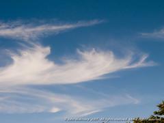 061922 (John Walmsley) Tags: britain england gb gbr hampshire isleofwight uk altitude atmosphere cirrus cloud clouds cloudscapes high httpbitlyflickrwalmsleyalbums meteorology sky skyscapes weather wind wwwwalmsleyblackandwhitecom johnwalmsley walmsley