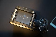 DSC08301 (NewScreenName4Me) Tags: 4sale contax 645af mediumformat film