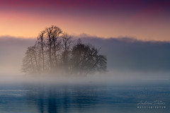 A9908569_s (AndiP66) Tags: gamma insel island sursee luzern lucern blauestunde bluehour nebel dunst fog mist sonnenaufgang sunrise sonne sun morgen morning sony alpha sonyalpha 99markii 99ii 99m2 a99ii ilca99m2 slta99ii tamron tamronspaf70200mmf28dildif tamron70200mm 70200mm f28 amount andreaspeters