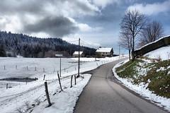 Vosges (denismartin) Tags: denismartin vosges vosgesmountain mountains spring nature landscape lorraine france vanishingpoint road ontheroad winter snow cloud sky forest
