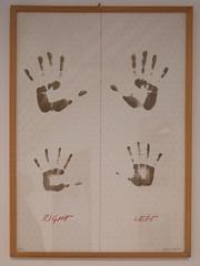 Amaia del Ponte - Cartella grafica 1975 (anto291) Tags: vetrinedilibertà lalibreriadelledonne fabbricadelvapore arte artecontemporanea art contemporaryart