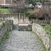 A WALK ALONG THE RIVER DODDER [ CLONSKEAGH TO MILLTOWN ]-146730