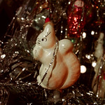 Ein weiteres Eichhörnchen wünscht frohe Weihnachten thumbnail